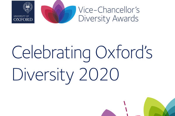 vc diversity awards pic