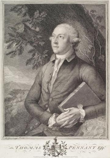 Thomas Pennant